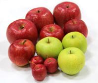 ジョナゴールド・王林・フジりんご・姫りんご …