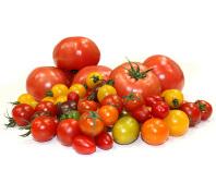 トマト・プチトマト …